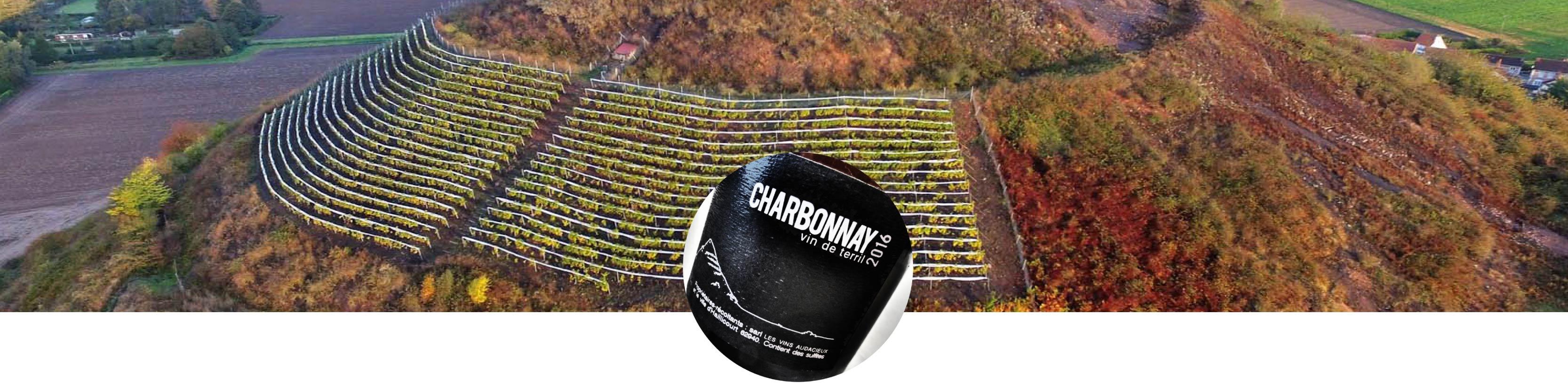 banniere-vin-terril-charbonnay