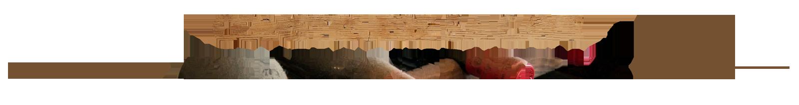 banniere-construire-cave